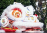 Cabeza de dragon chino