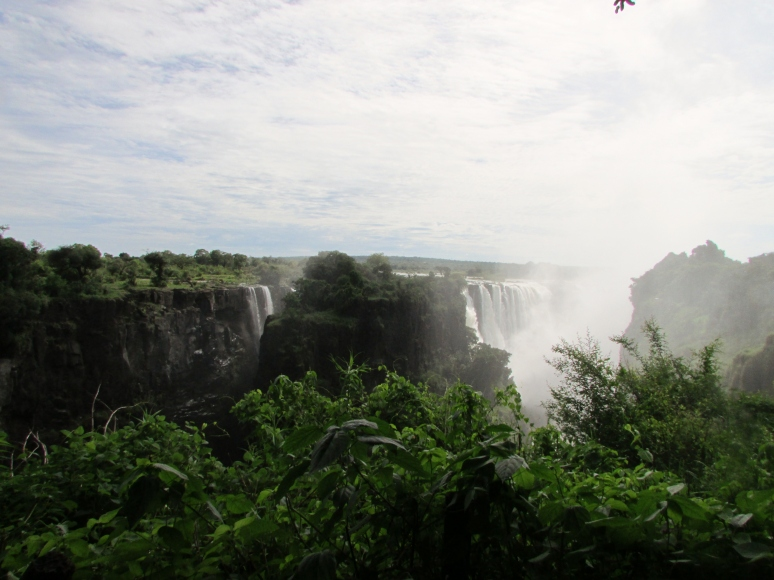 Africa Perla 053