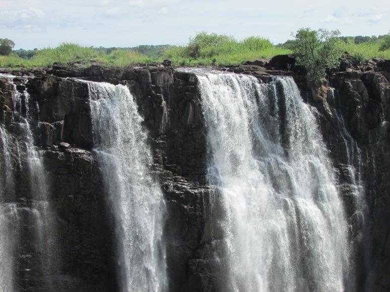 Africa Perla