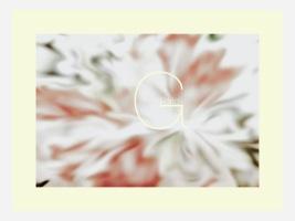 Perla Gutierrez. Website designer
